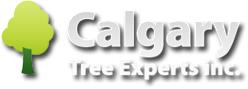 Calgary Tree Experts Inc